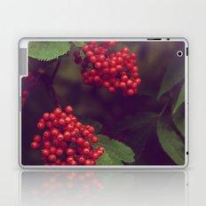 Berries Laptop & iPad Skin