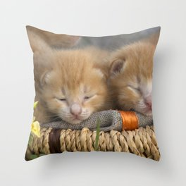 Group of small striped kittens in an old basket. Throw Pillow