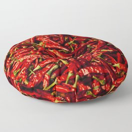 Chili in the Sun Floor Pillow