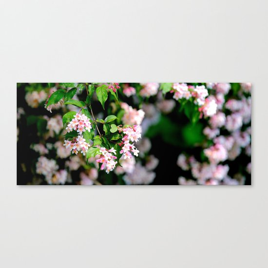 Spring Into Action Canvas Print