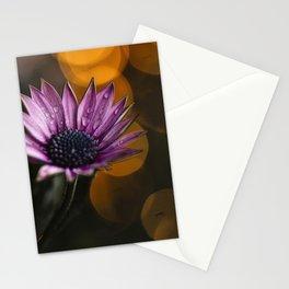 Osteospermum | Fine art moody flowers  Stationery Cards