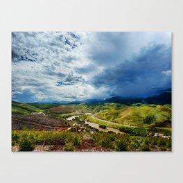 Eucalyptus harvest Canvas Print