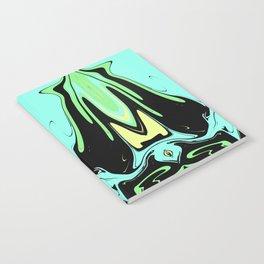 Hidden Turtles Notebook