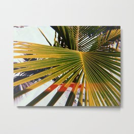 Bahama Breeze  Metal Print