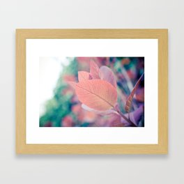 Natures Watercolor Framed Art Print