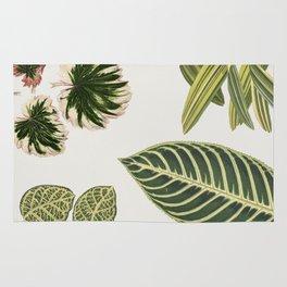 Green Botanical Plants Watercolor Pattern Rug