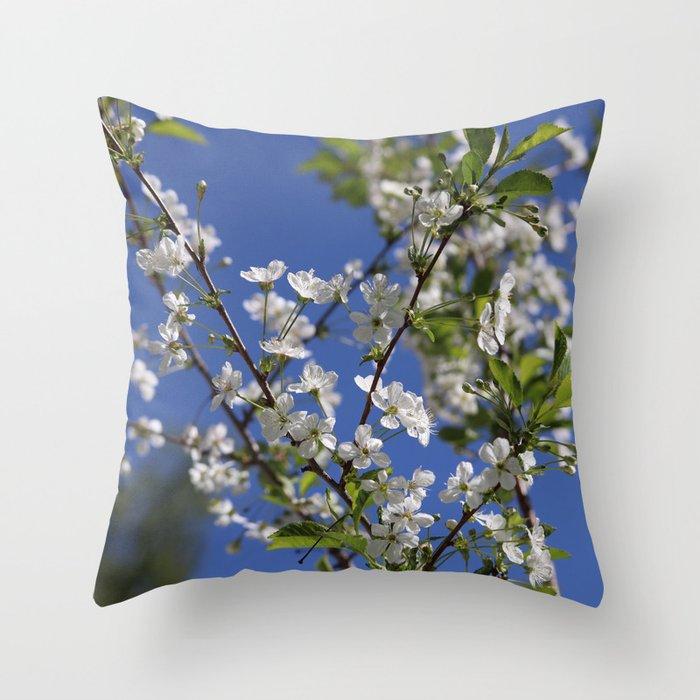 Cherry blossom and blue sky Throw Pillow