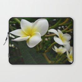 Closeup Frangipani with Natural Garden Background Laptop Sleeve
