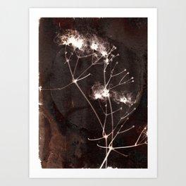 Botanicus (71) Art Print