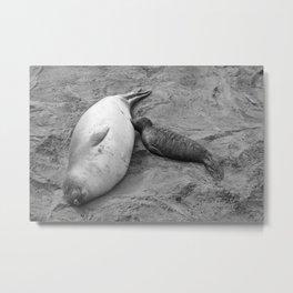 Elephant Seal Mom and Pup Metal Print