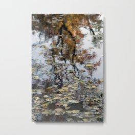 Floating Autumn leaves Metal Print