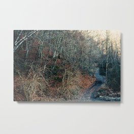 Blue Path Metal Print