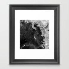 Dusty Cheek Framed Art Print