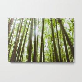 Hawaii Bamboo Metal Print