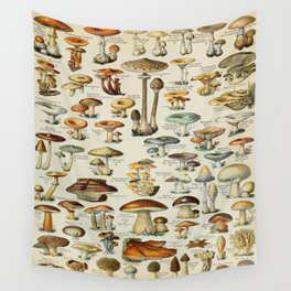 Mushrooms Vintage Scientific Illustration French Language Encyclopedia Lithographs Educational Wall Tapestry