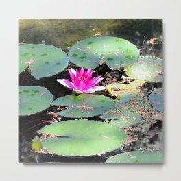 Beijing Imperial garden | Jardin Impérial Metal Print