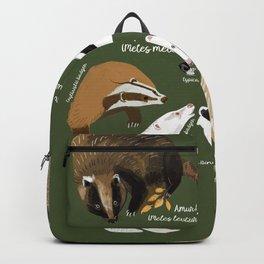 Badgers Meles Genus Poster Backpack