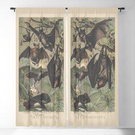 Chiroptera Blackout Curtain