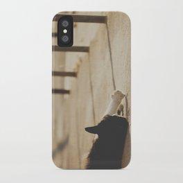 Gatunadas I iPhone Case