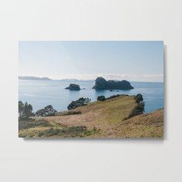 Coromandel Peninsula Metal Print
