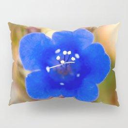 Desert Bluebell Alternate Perspective Pillow Sham