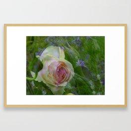 little rose Framed Art Print
