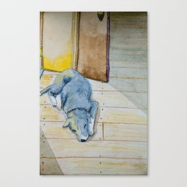 Sleeping little dog! Canvas Print