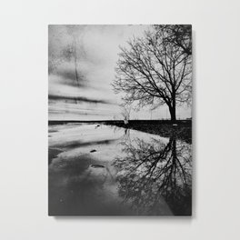 | after the rain | Metal Print