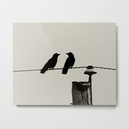 Feathery Pair - Graphic Birds Series, Plain - Modern Home Decor Metal Print