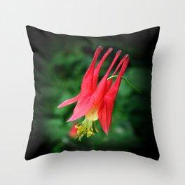 Wild Columbine Throw Pillow
