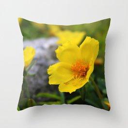 Yellow Buttercup Flower Throw Pillow