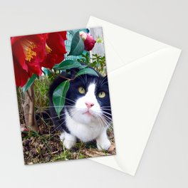 Orazio, the cat of camellias Stationery Cards