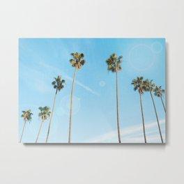 Palm Tree Morning Metal Print
