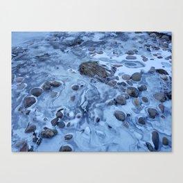 Freeze Dried Canvas Print