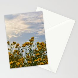 Last days of Summer Stationery Cards