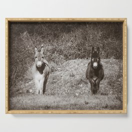 Pair of Donkeys in the French Country - Animal Photography in Black and White Serving Tray