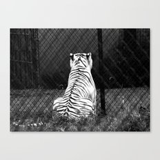 Nope Canvas Print