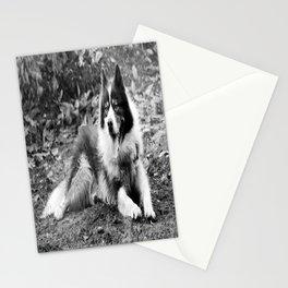 greenland dog Stationery Cards