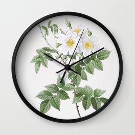Vintage Blooming White Rosebush Illustration Wall Clock