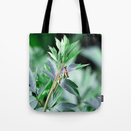Welcoming Spring Tote Bag
