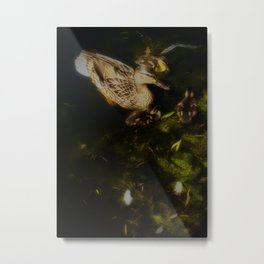 Mallard Duck Family, Mother With Ducklings Metal Print