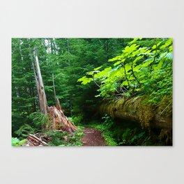 A path to an adventure Canvas Print