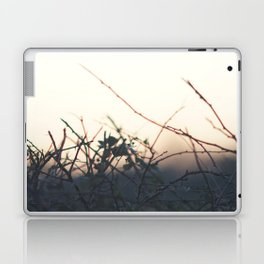 Winter Hedgerow Laptop & iPad Skin