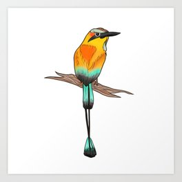 Motmot Bird Water Color & Ink Illustration Art Print