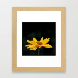 Bright Yellow And Black Framed Art Print