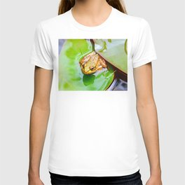 Frog on a Lily-pad T-shirt