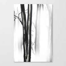 wood, snow and fog Canvas Print