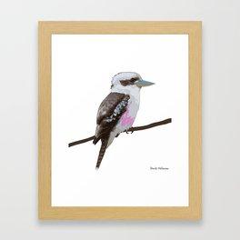 Kookaburra, Kingfisher Bird Framed Art Print