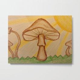 Mushrooms in the sun Metal Print