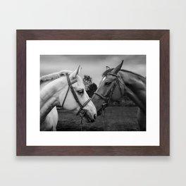 Horses of Instagram II Framed Art Print